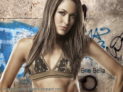 WWE Brie Bella Wallpapers