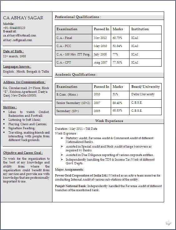 chartered accountant resume in word document format