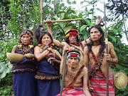 . é reconhecido pelos Pataxó como suas terras tradicionais. (potiguaras)
