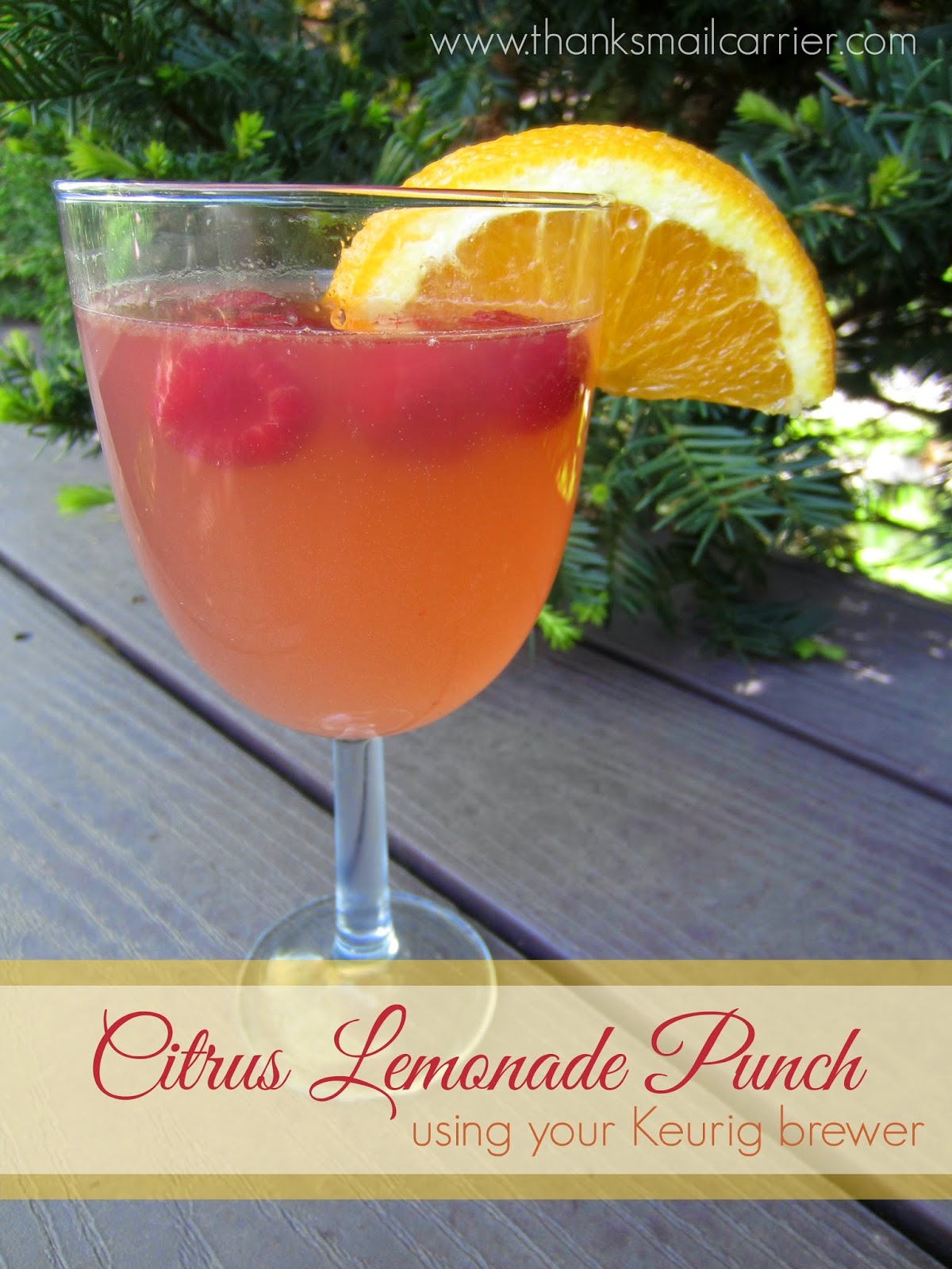 Citrus Lemonade Punch