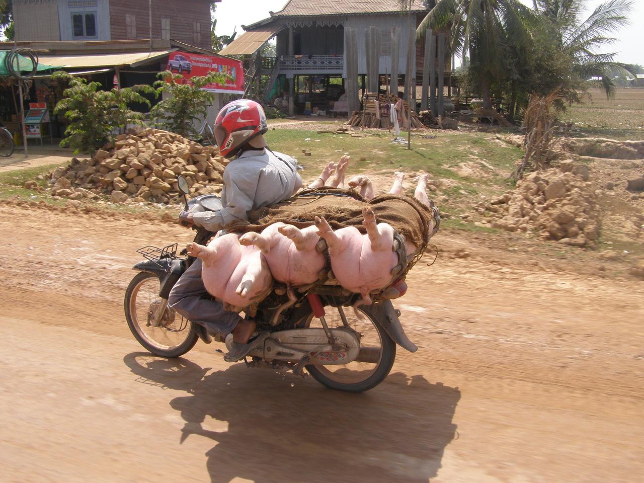 Камбоджа. Страна «Нарочно не придумаешь!»