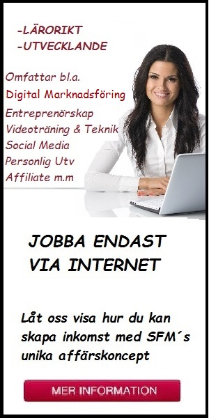 JOBBA ENDAST VIA INTERNET