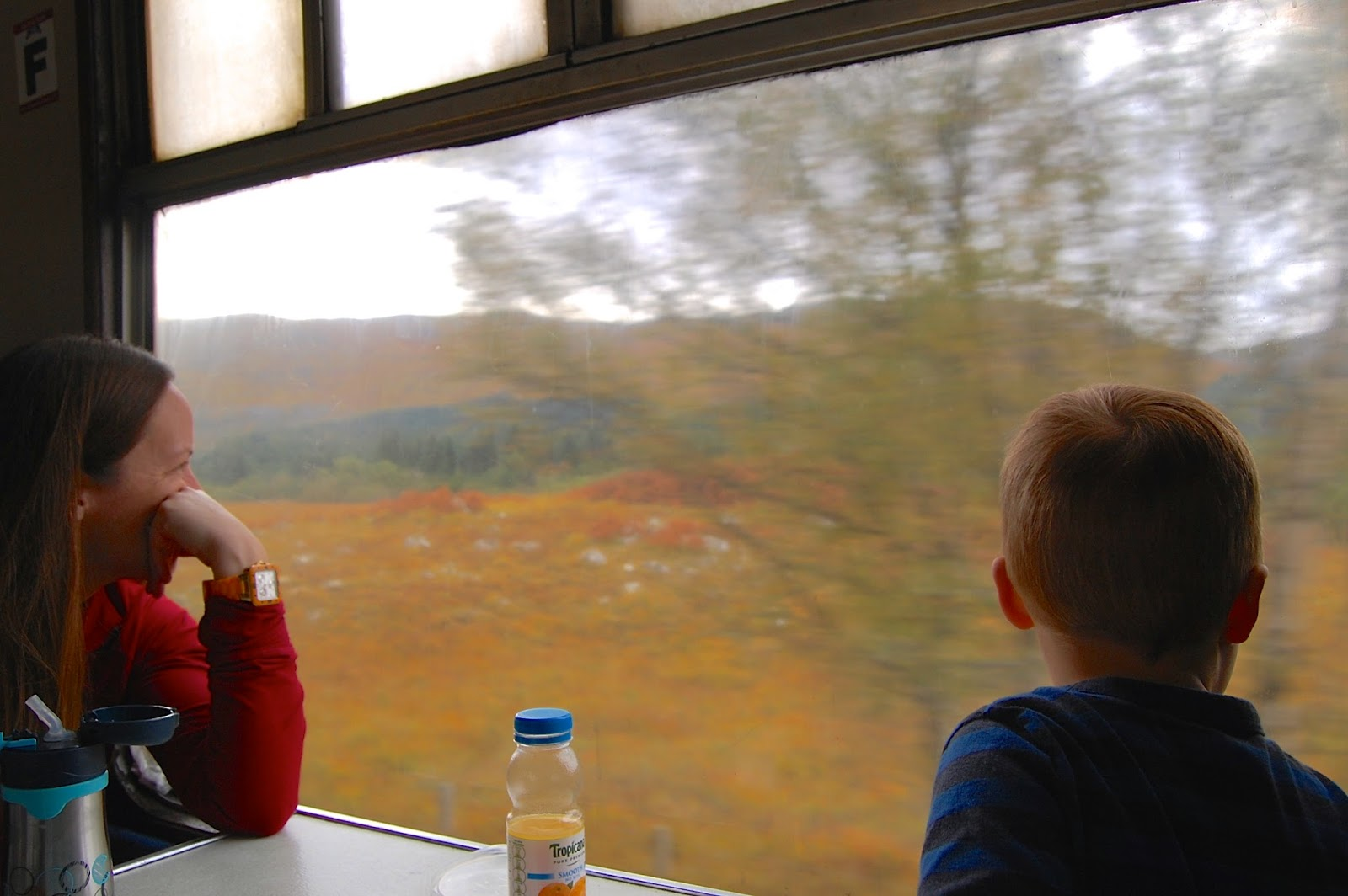Scenery on the train