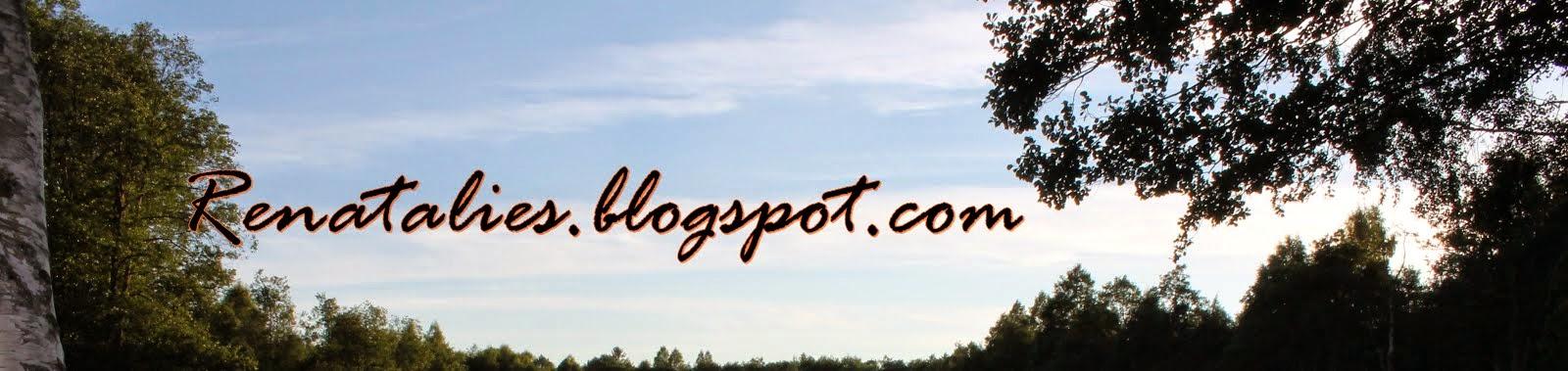 Mój blog, moje hobby