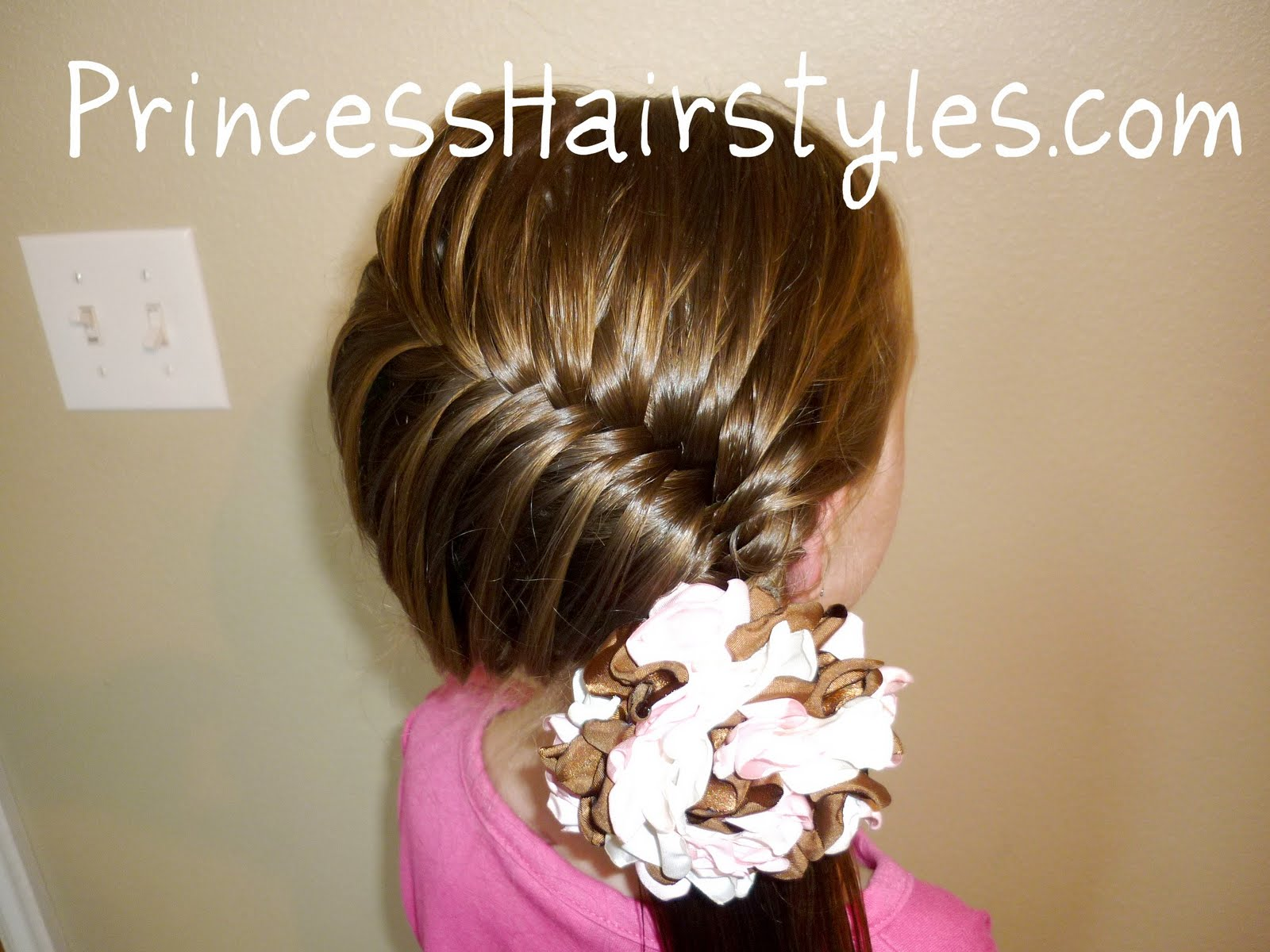 French Fish Braid Hairstyle Side Swept