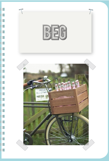 Beg Bicycles by Torie Jayne