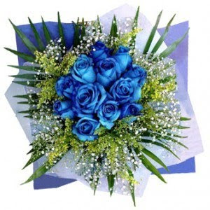 Blue Rose  Flower Wallpapers