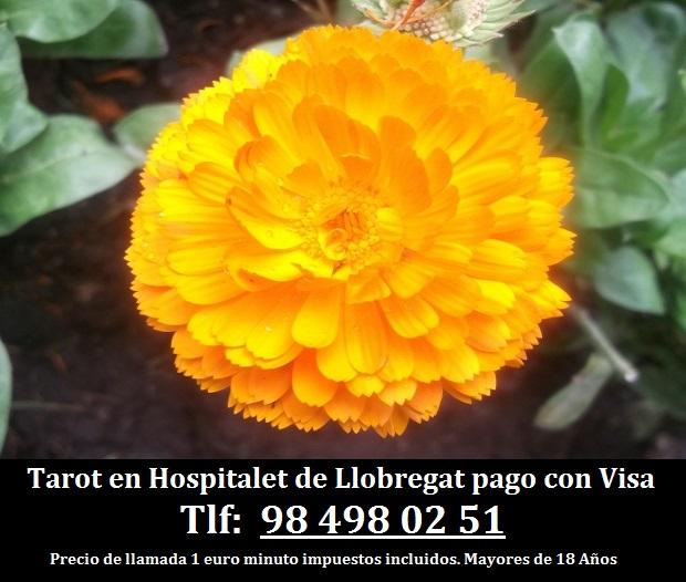 Tarot en Hospitalet de Llobregat pago con Visa