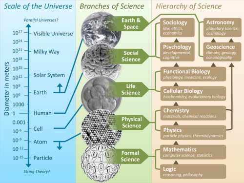 Scientific Universe
