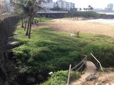 O que será que a prefeitura tem contra a Praia da Paciência?
