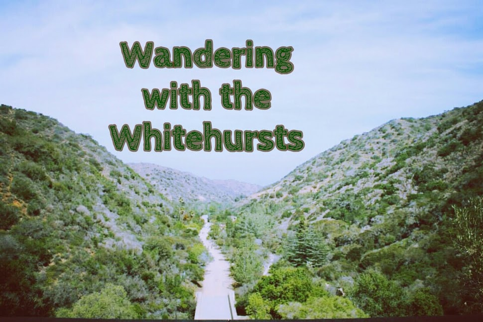 Wandering with the Whitehursts