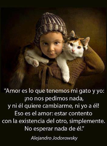 Jodorowsky - Amor es lo que tenemos mi gato y yo