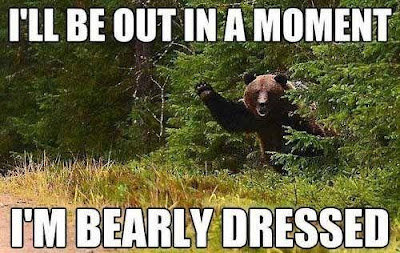 Bear who's barely dressed.