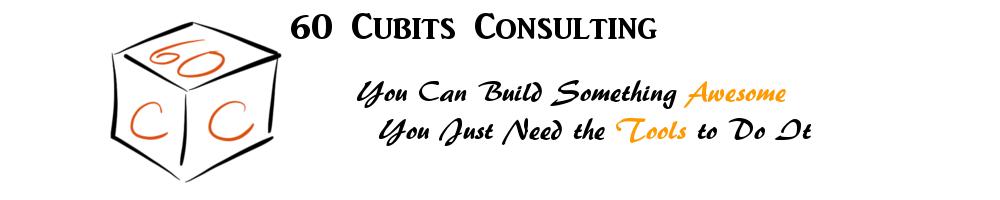 60 Cubits Consulting