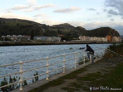 Pescando bajo el puente Rontegi