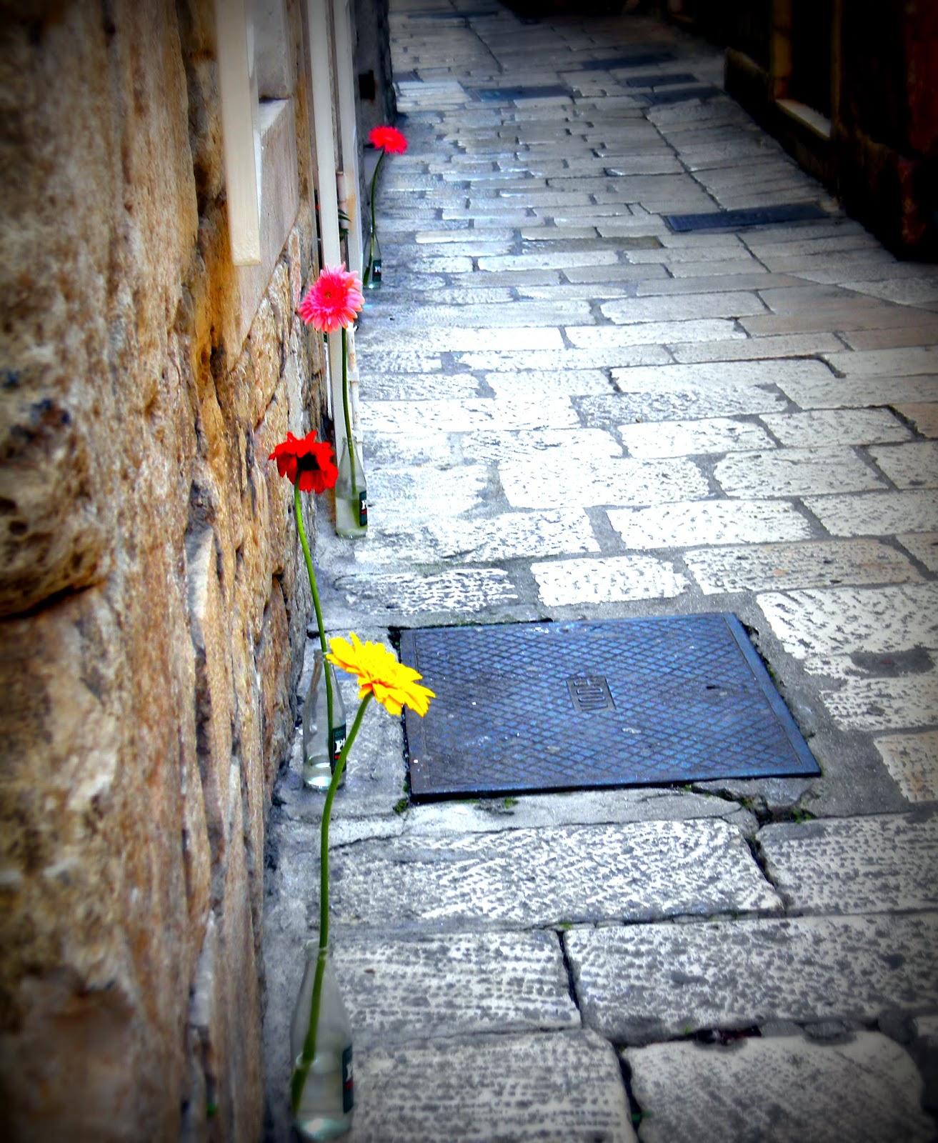 Imagenes y fotos: Tarjetas con Frases de Pesame, parte 3 - Imagenes De Flores Para Luto