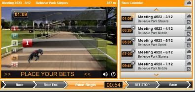 merrybet virtual dog race betting