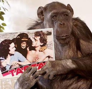 La mona Chita mostrando foto con Tarzán