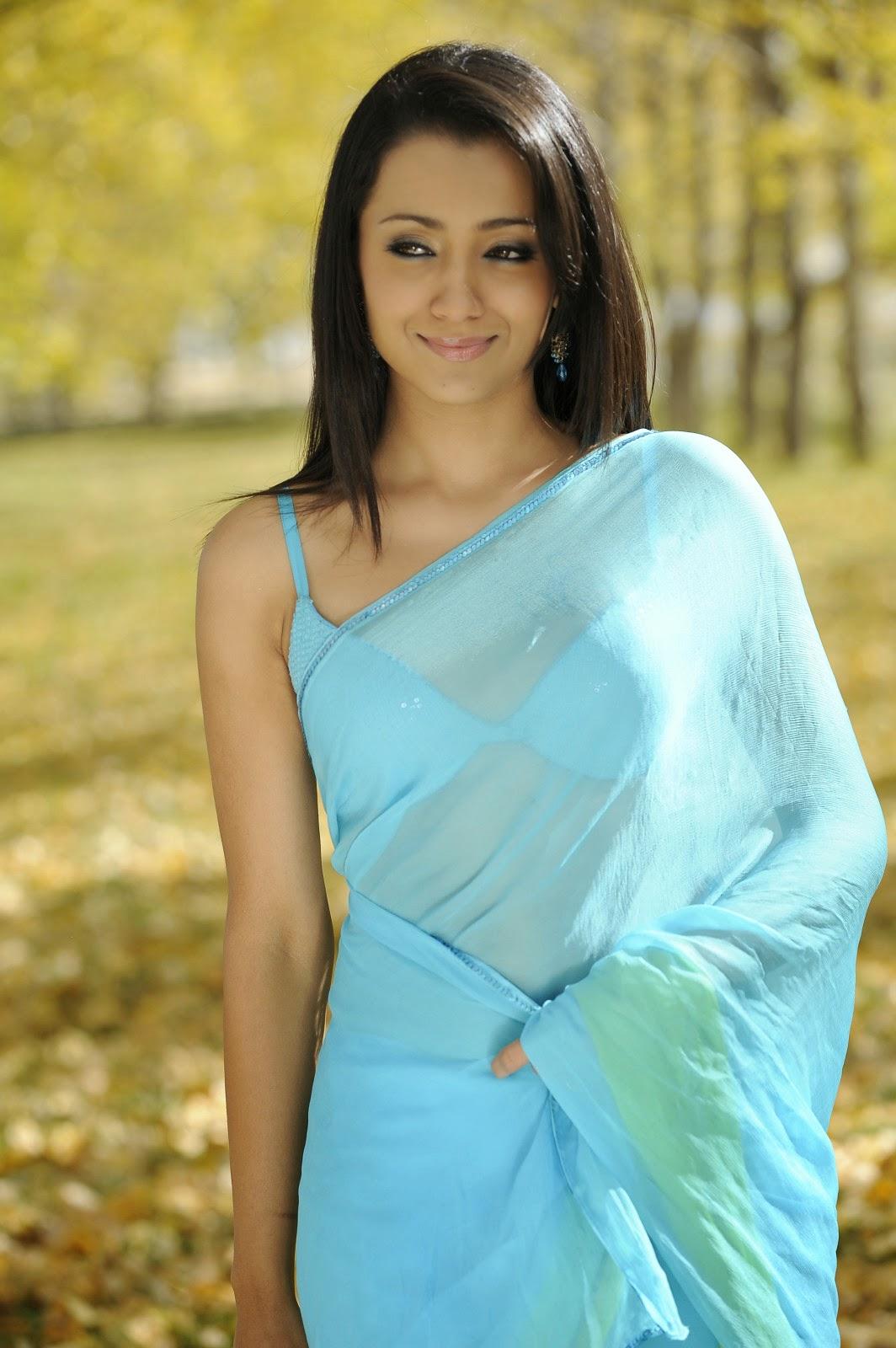 Trisha krishnan saree