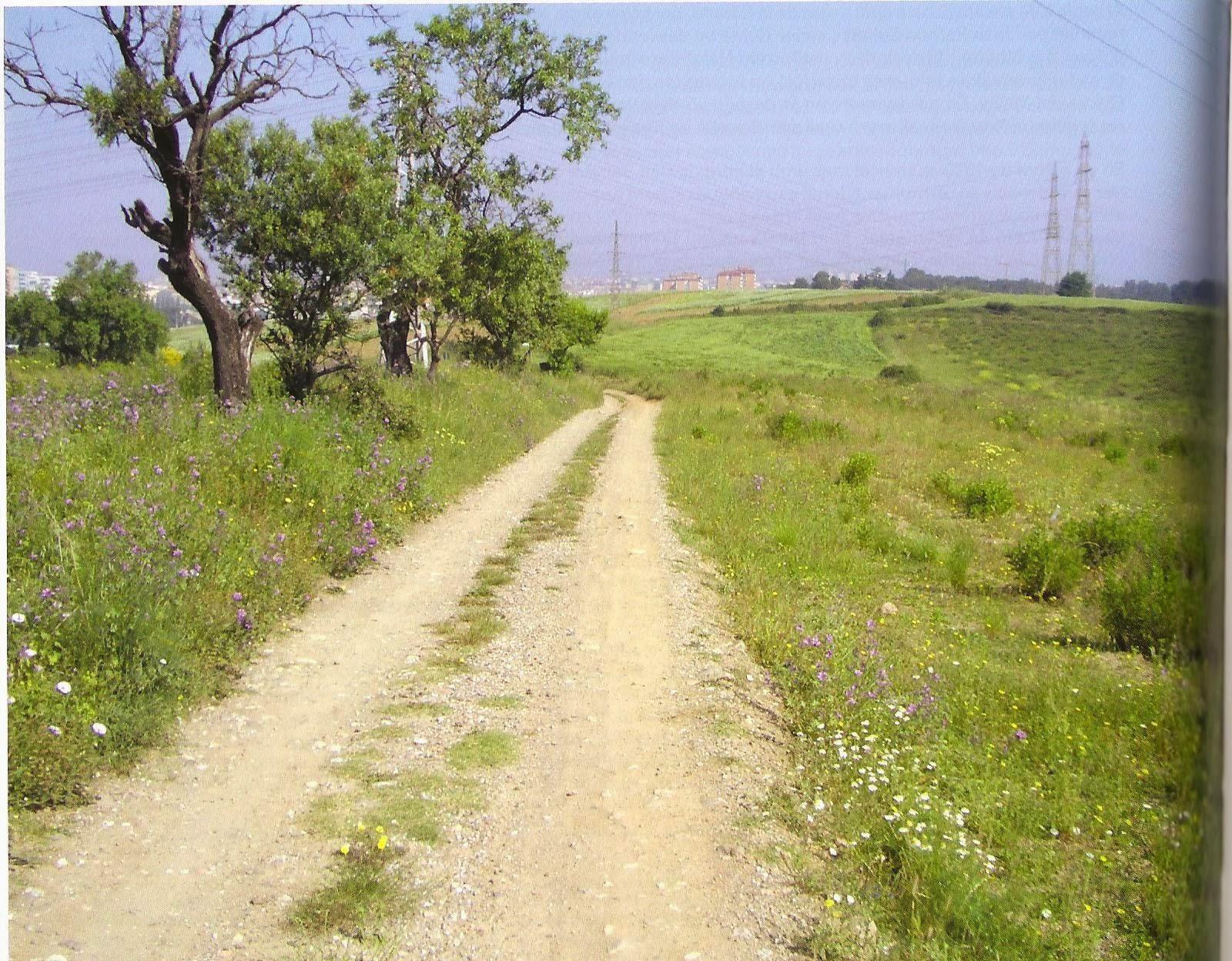 El Camí dels Monjos - El Tram de Terrassa