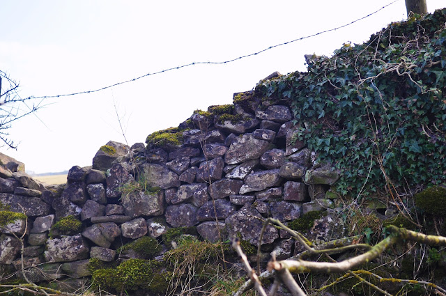 Yorkshire Wall