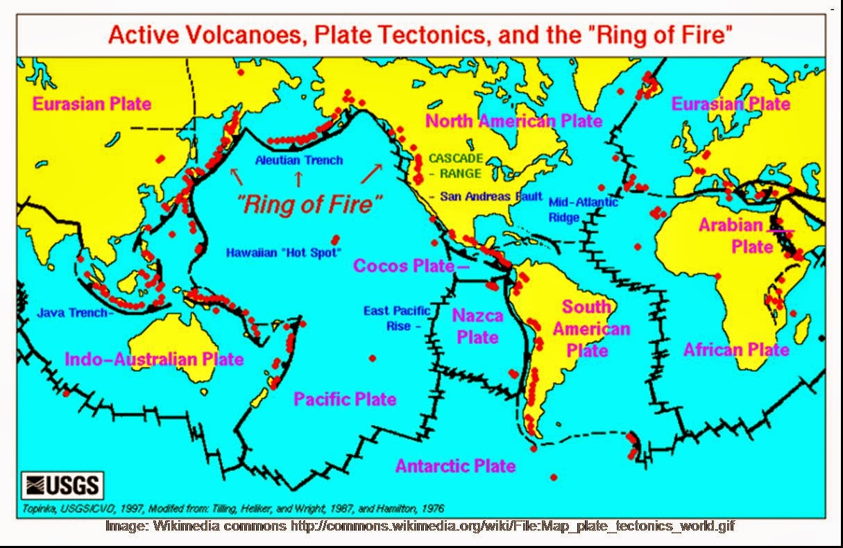 simplistically the earth consists of the plates and plate boundaries those zones where the plates contact and interact observe that 7 different plates