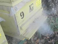 Varroa için Oksalik Asit Buharı