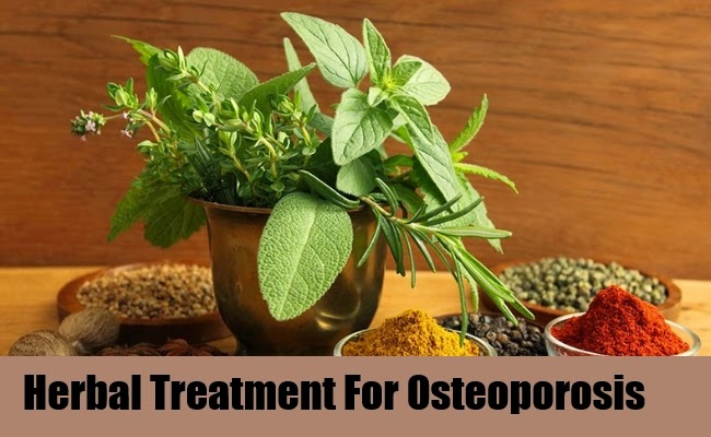 Herbal treatments used to improve and prevent osteoporosis guide herbal treatments used to improve and prevent osteoporosis publicscrutiny Gallery