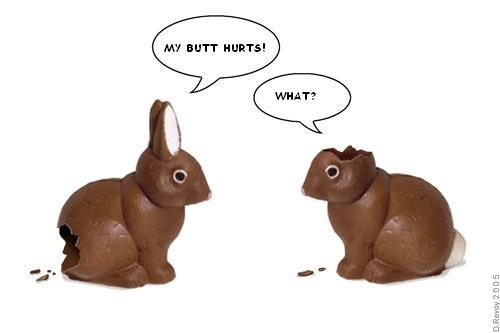 funny easter bunny pics. funny easter bunnies pictures.