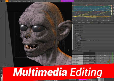 Multimedia Editing