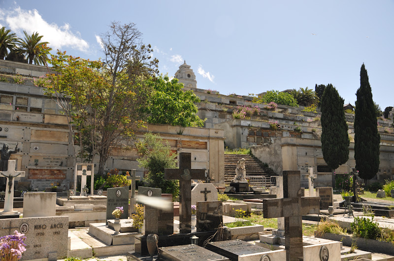 Cagliari in Verde: I terrazzamenti del Cimitero