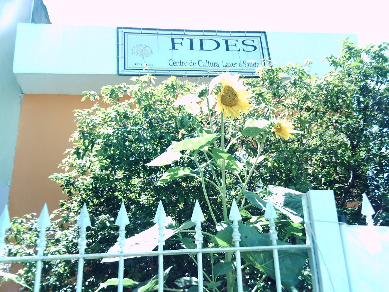 Agenda FIDES