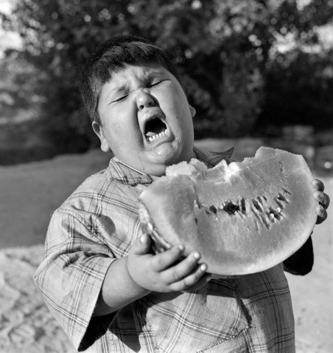 Funny fat kid pics