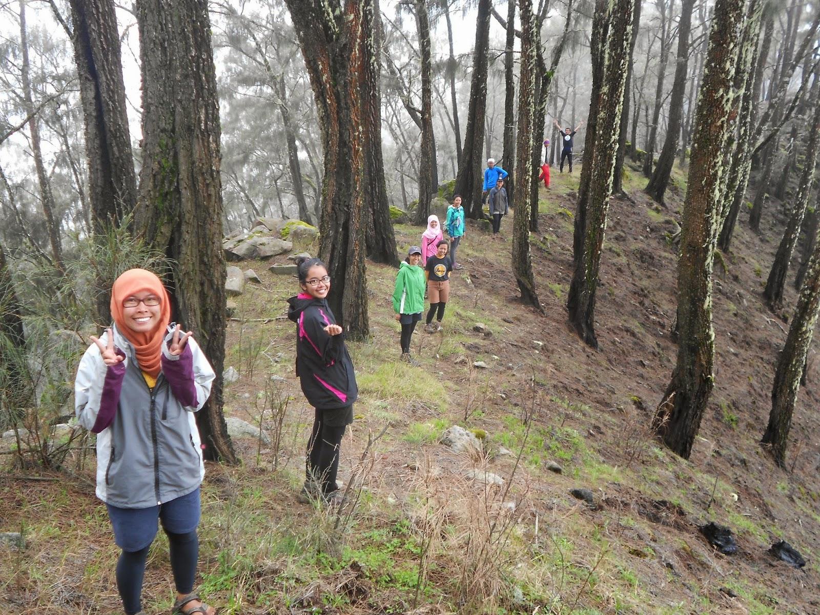 Anugerah Keindahan Alam Indonesia di Gunung Argopuro