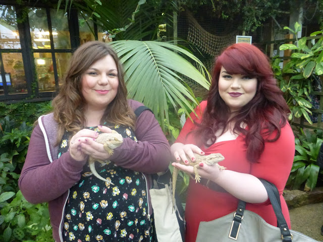 holding lizards at Tropical Butterfly House