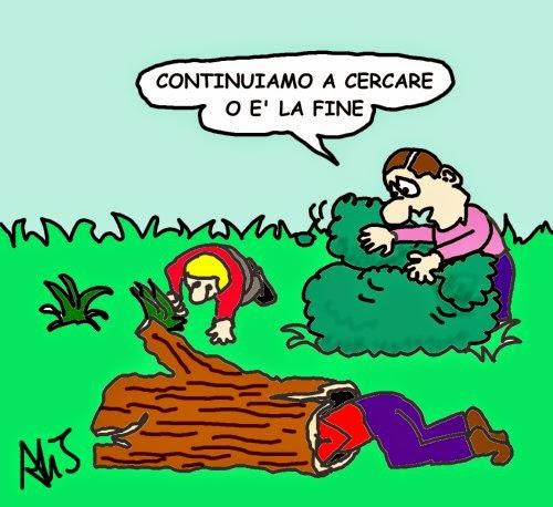 vignetta Napolitano, lavoro