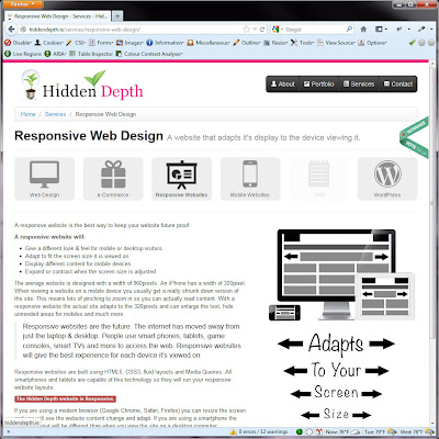 Screen shot of http://hiddendepth.ie/services/responsive-web-design/.