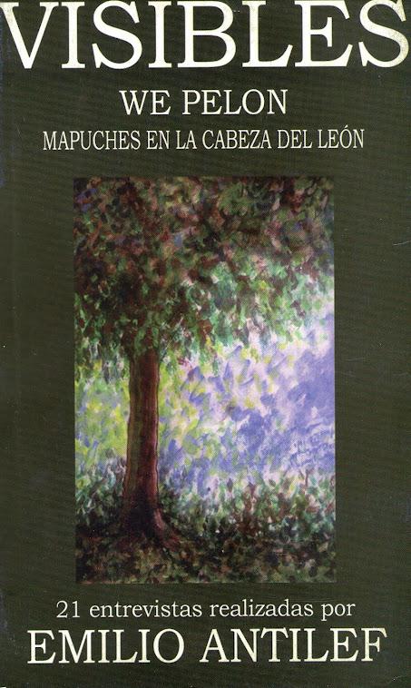 Tapa del libro de Emilio Antileo