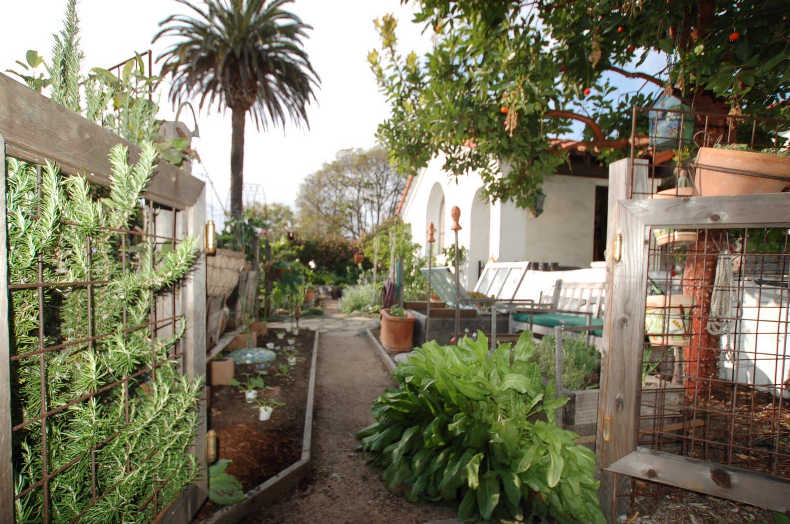 mar vista green garden showcase 3782 redwood avenue cluster 5