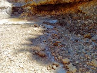 agua Barranco de la Sal María de Huerva