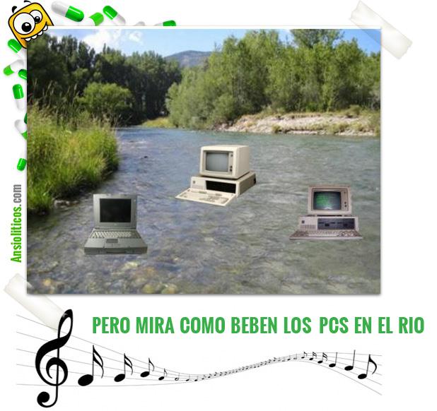 Chiste: Mira como beben los peces en el río