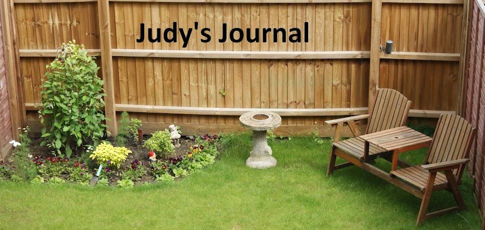 Judy's Journal