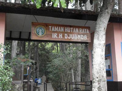 Objek Wisata di Indonesia - Taman Hutan Raya Juanda yang Sejuk