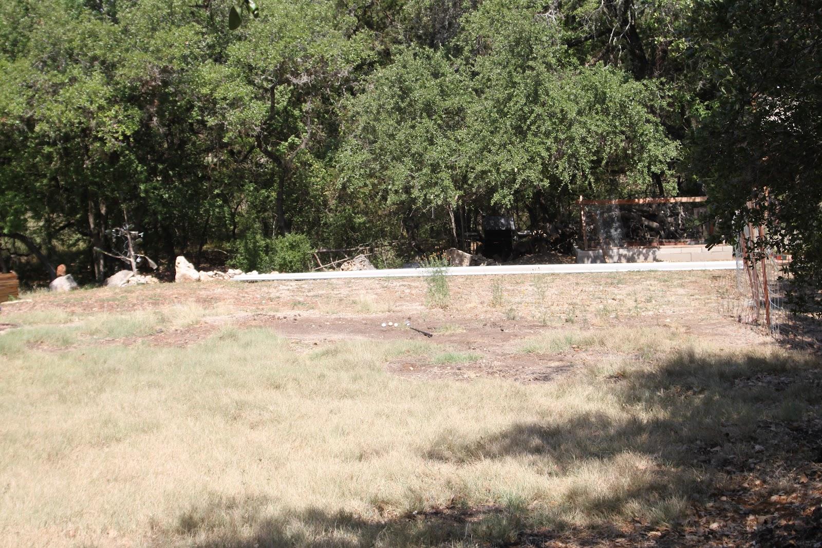 rock oak deer gardening on the rocks new backyard garden