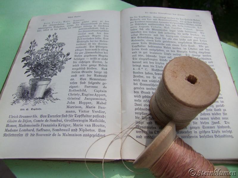 alte Pflanzenbücher