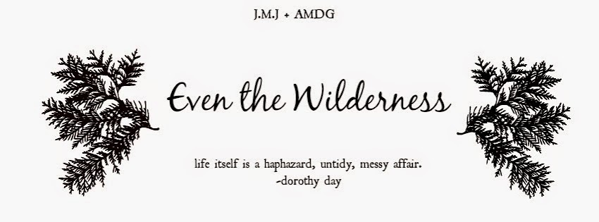 Even the Wilderness