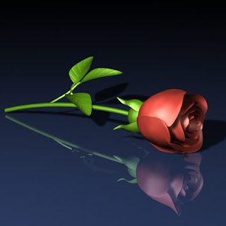 Roses Pictures - 3D Rose Pictures - Roses Wallpapers