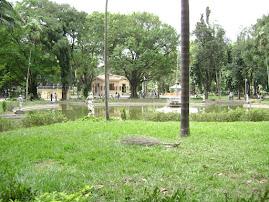 Jardim da Luz -São Paulo