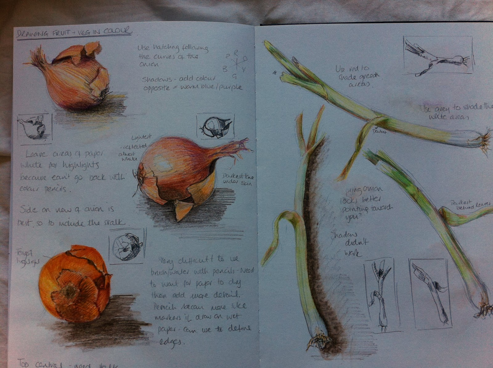 OCA Learning Blog - Drawing 1: Assignment 3 - Drawing ...