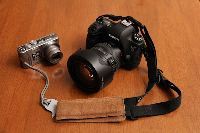 Panasonic DCM ZS10 & Canon EOS 6D
